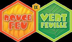 Cartes Pokémon Ex Rouge Feu Vert Feuille en vente au meilleur prix